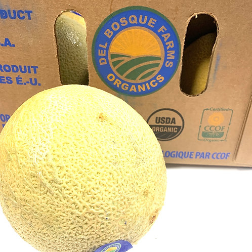 Organic cantaloupe 1ea (Localy grown)