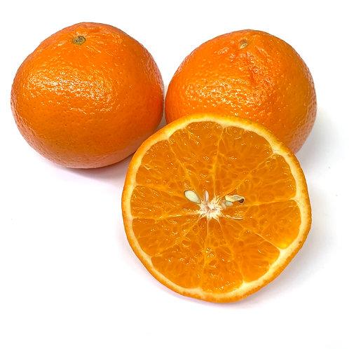 Daisy mandarins 1lb