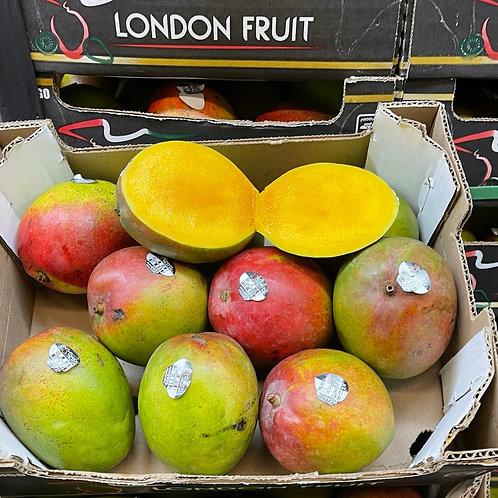 Haden mango 1ea