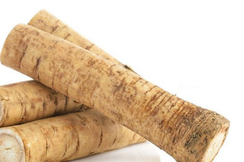 Gobo root, 1 stalk approx. 0.5lb