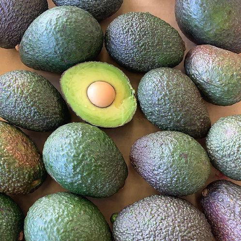 Small avocados (2 lb. Bag)