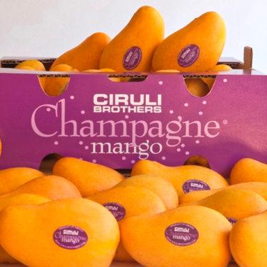 Champagne mangoes 22ct
