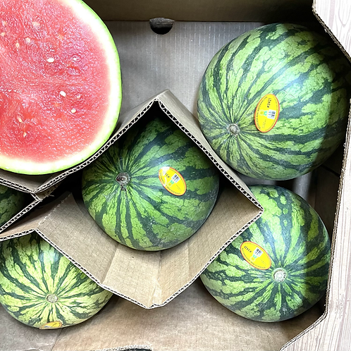 Mini Seedless Watermelon (appx 3-4lbs)