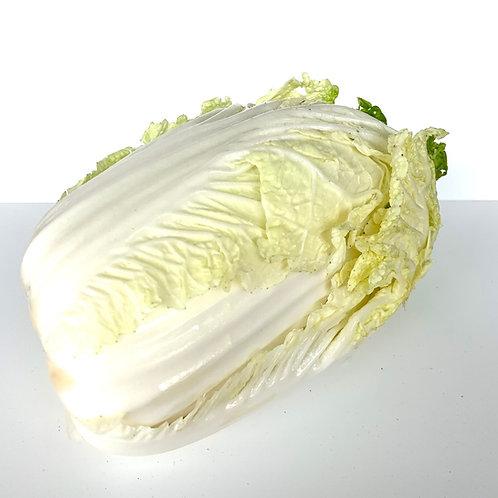 Organic napa cabbage appx 1.5-2 lbs