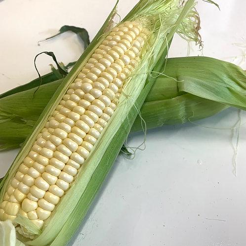 White corn 1ea