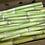 "Thumbnail: Sugar Cane Stalk abt 18"" (appx 1lb)"