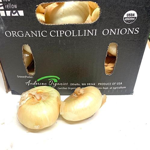 Organic yellow cipollini onions 5pcs (14-16z)