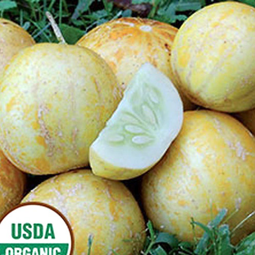 Organic Lemon Cucumbers 1lb (Locally grown)
