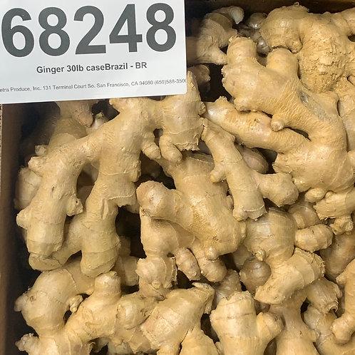 Brazilian ginger root lb