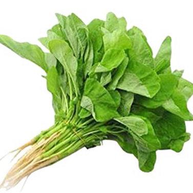 Green Zen Choy (Amaranth)