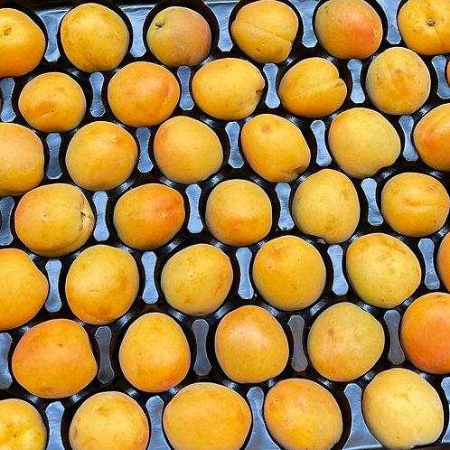 Apricots 1lb