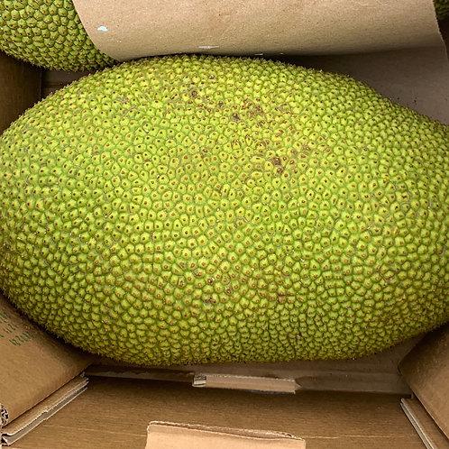 Jackfruit 18-22lbs