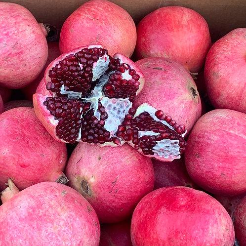 Extra Large Pomegranate 1ea
