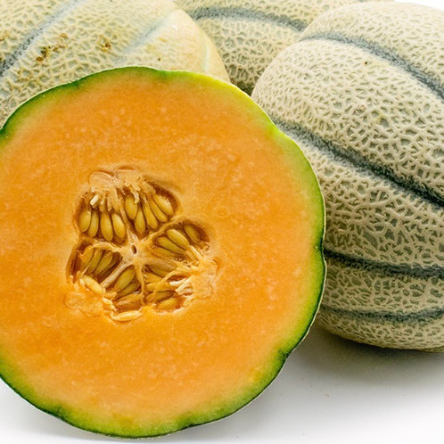 Tuscan melon 1ea