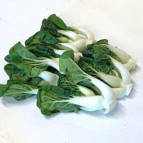 Bok Choy Sum 1.5 lbs. (Localy grown)