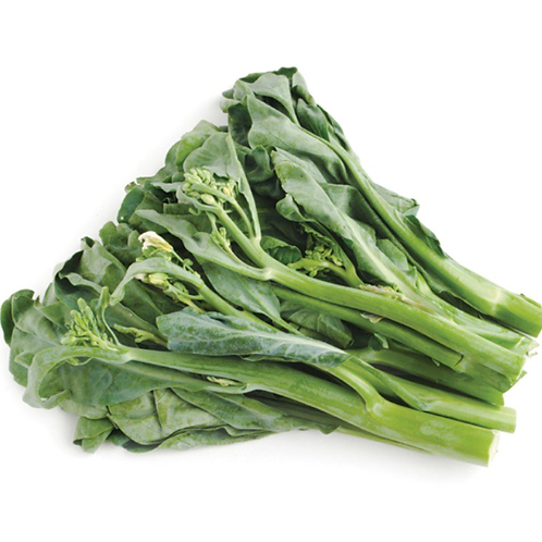"Gailan ""Chinese Broccoli"" 1lb  (Mx)"