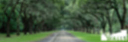 Country-Road 3 to 1 - 115.jpg
