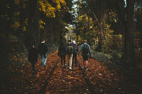 Back Soon: Woodland Wednesdays Public Forest Bathing Sessions