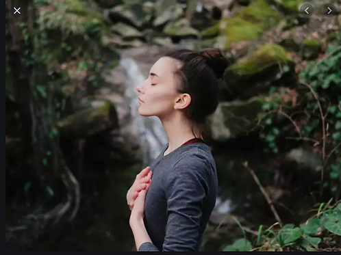 Forest Bathing & Conscious Connected Breath Experience