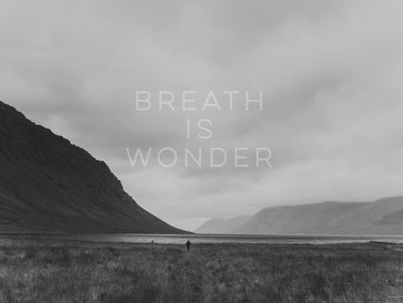 The Wonder Of Breath