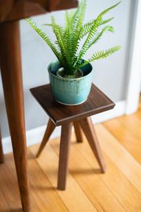 Medium Planter Stands-3.jpg