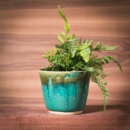 Starved Rock Collection Planters