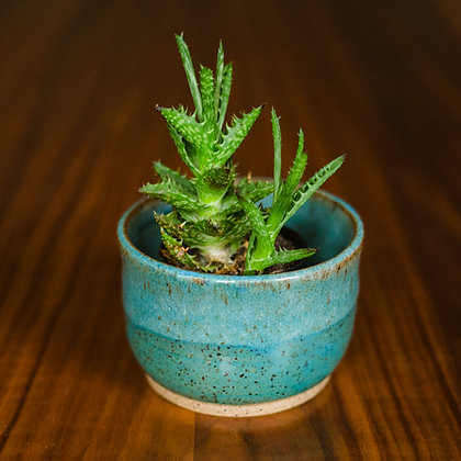 Telluride Collection Speckled Planters