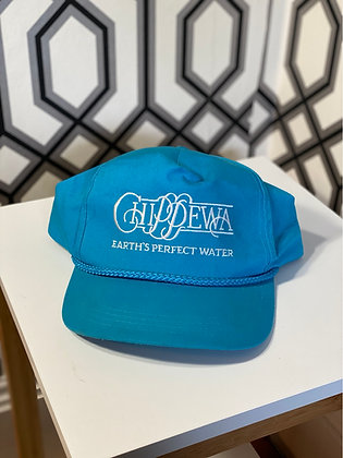 Vintage Chippewa Earths Perfect Water Snapback