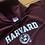 Thumbnail: Champion Harvard Hoodie