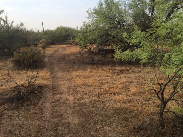 Sonoran Preserve Bike Shop