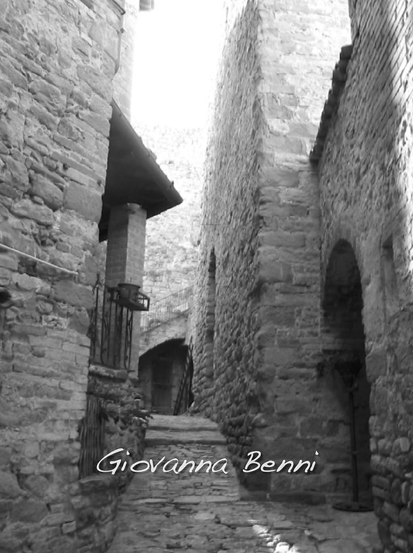 Giovanna Benni Incastellamento 704.jpg