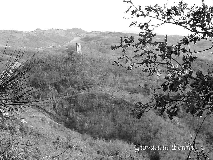 Torre certaltagiovanna benni watermark .