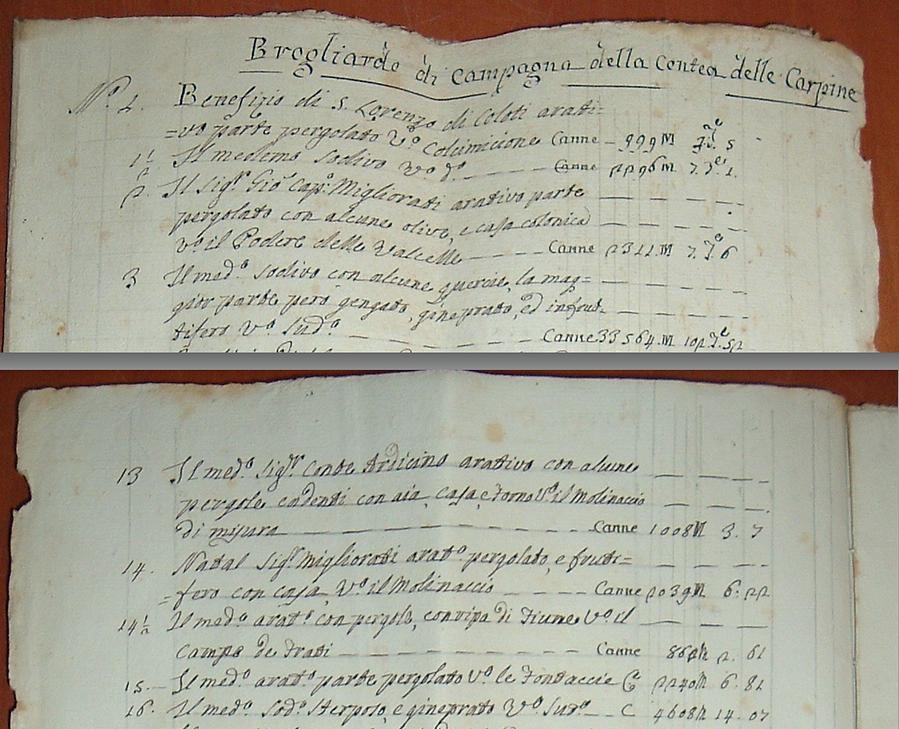 immagine Brogliardo delle carpini 1882 p