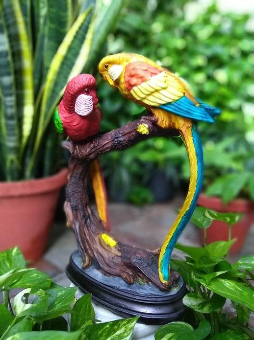 Parrot pair 01