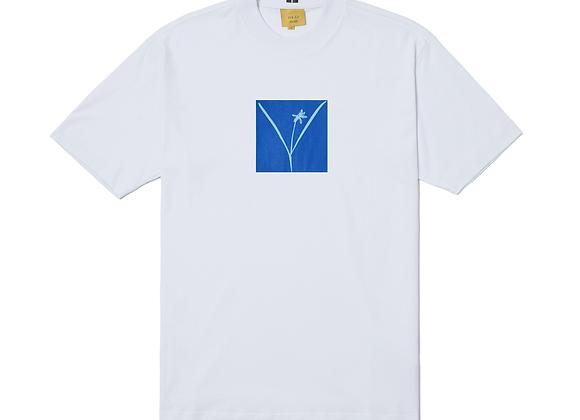 t-shirt class ''naturale'' white