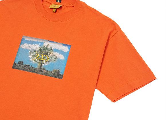 t-shirt class ''castelo local studios'' laranja
