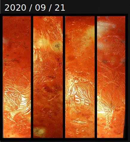 Screenshot_2021-02-17_19-47-32.png