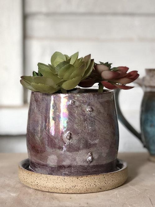 All-In-One Planter - Purple/small