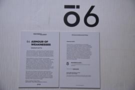 _DSC8560.JPG