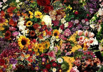 pazordan_Aglutinações_ flores.jpg