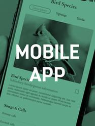 Mobile App v2.jpg