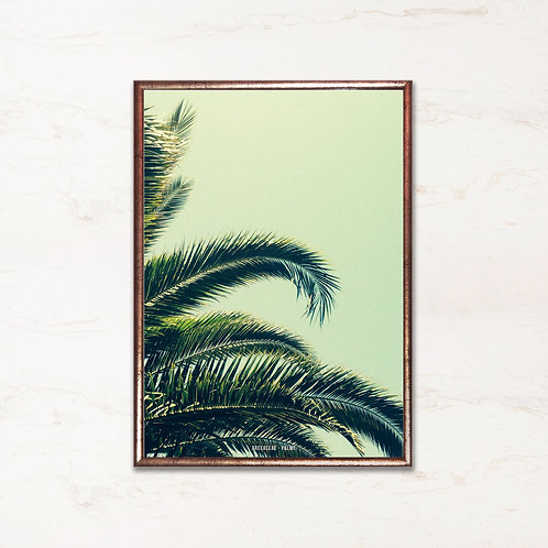 Palmeblade - Plakat