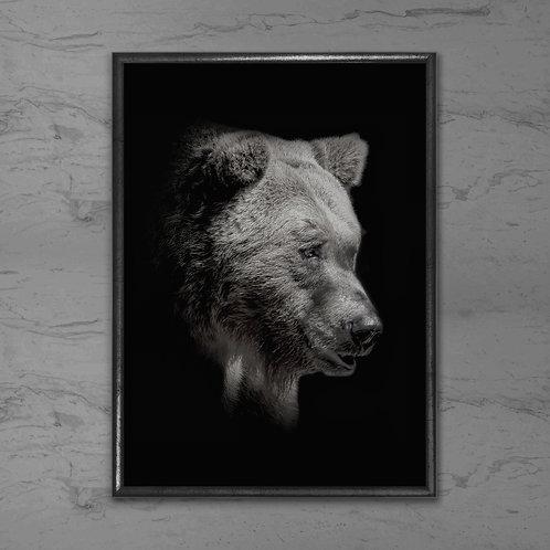 Bjørnen - Plakat i sort-hvid