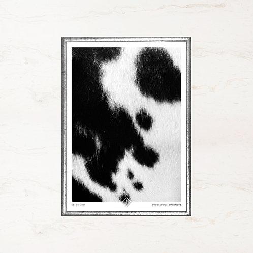 Koens skind - Plakat