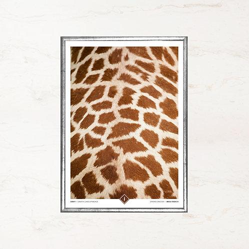 Giraffens pels - Plakat