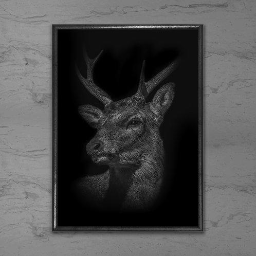 Hjorten - Plakat i sort-hvid