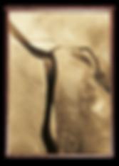 Plakat af ørken
