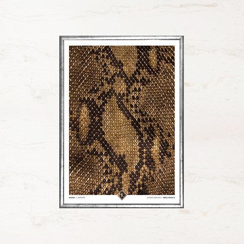 Slangens skind - Plakat