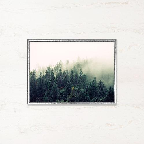 Skoven Ånder - Plakat af landskabet