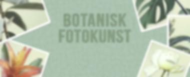 Botanisk fotokunst - IMAGI.dk